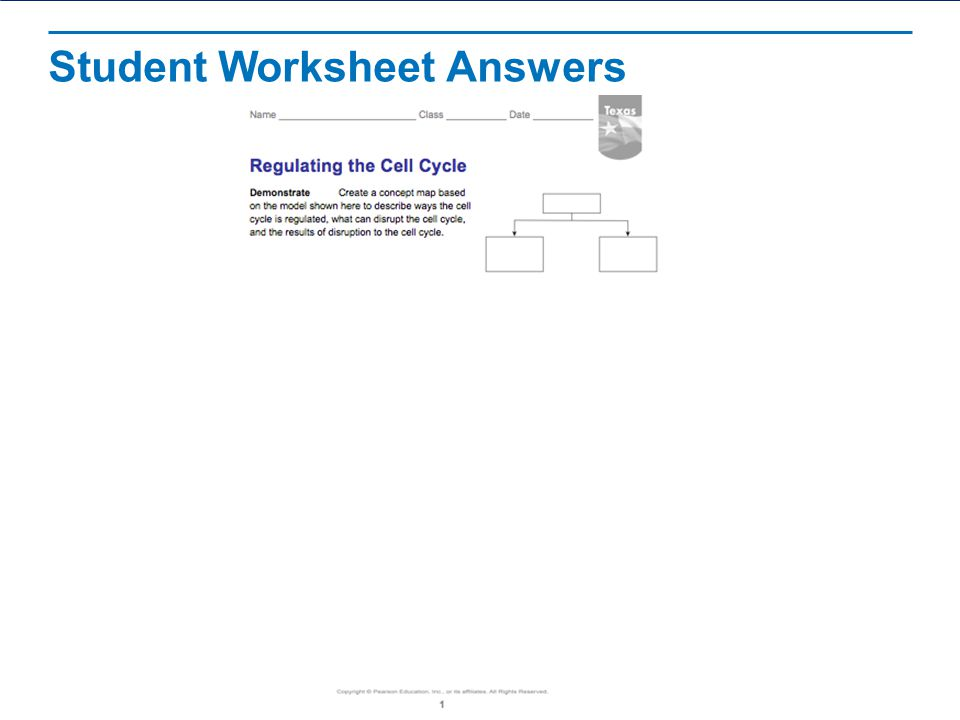 Student Worksheet Answers
