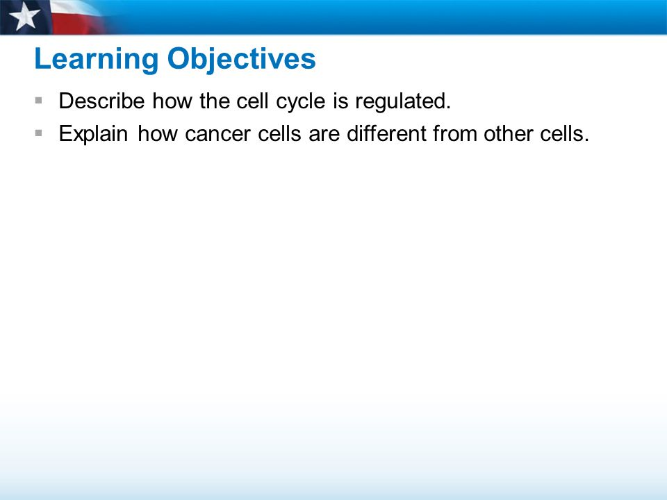 Learning Objectives Describe how the cell cycle is regulated.