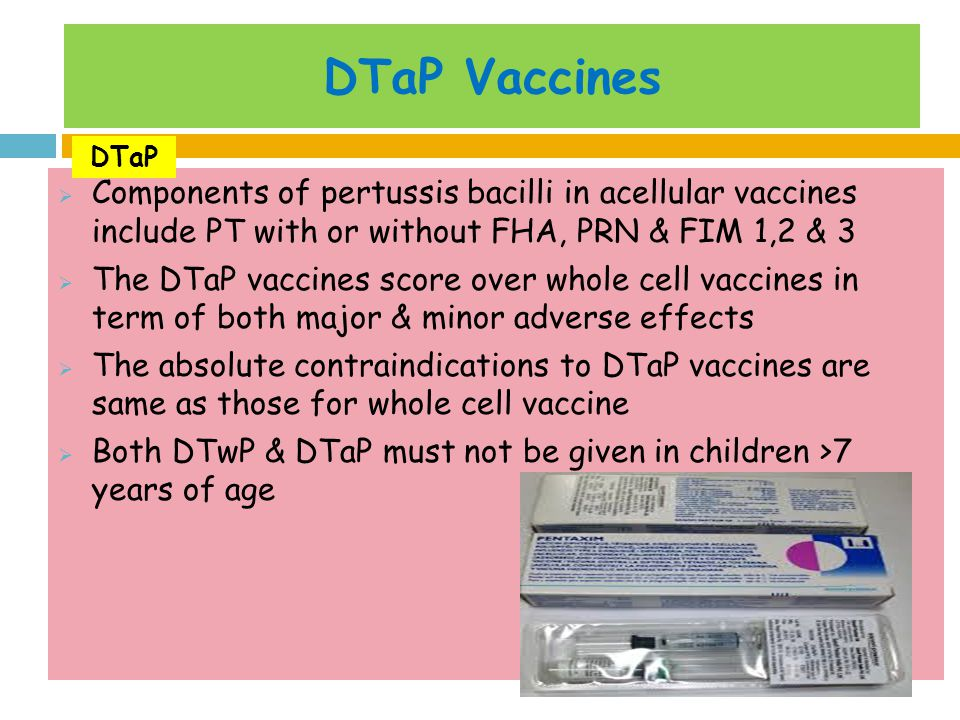 DTaP Vaccines DTaP. Components of pertussis bacilli in acellular vaccines include PT with or without FHA, PRN & FIM 1,2 & 3.