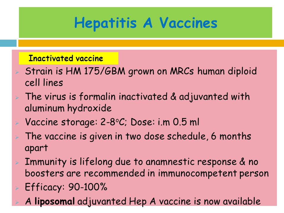 Hepatitis A Vaccines Strain is HM 175/GBM grown on MRCs human diploid cell lines.