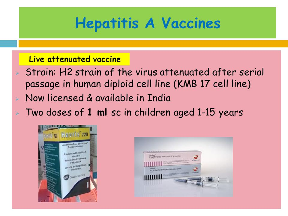 Hepatitis A Vaccines Strain: H2 strain of the virus attenuated after serial passage in human diploid cell line (KMB 17 cell line)