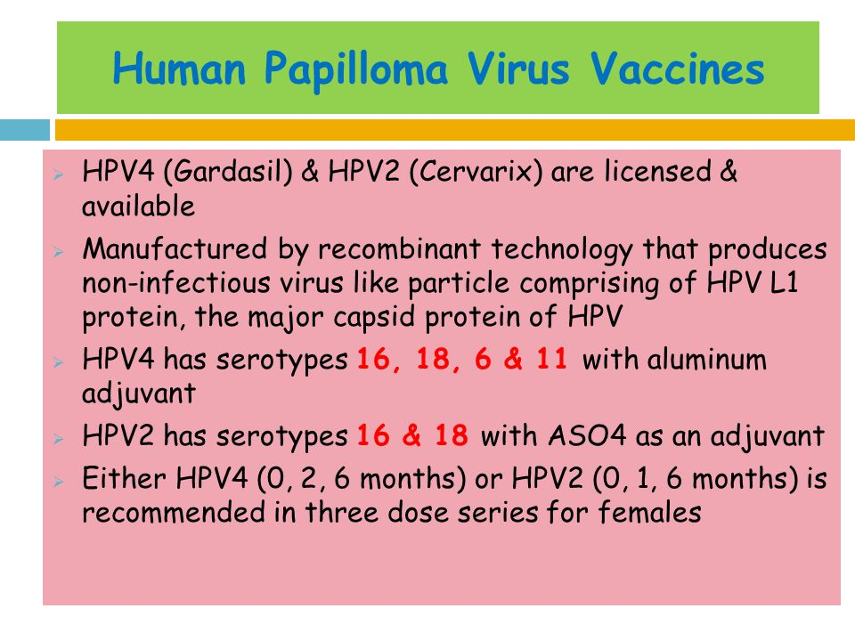 human papilloma virus vaccine essay Human papilloma virus the human papilloma virus, more commonly referred to as hpv, is a disease that causes warts on the body there are over one hundred differ.
