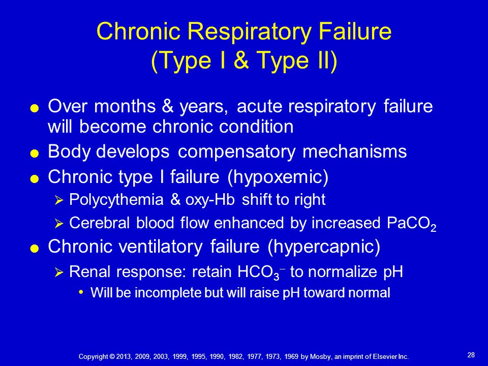 chapter 41 respiratory failure and the need for ventilatory, Skeleton