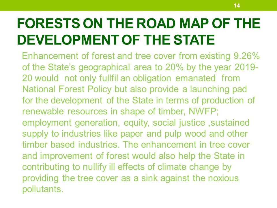 FORESTS ON THE ROAD MAP OF THE DEVELOPMENT OF THE STATE