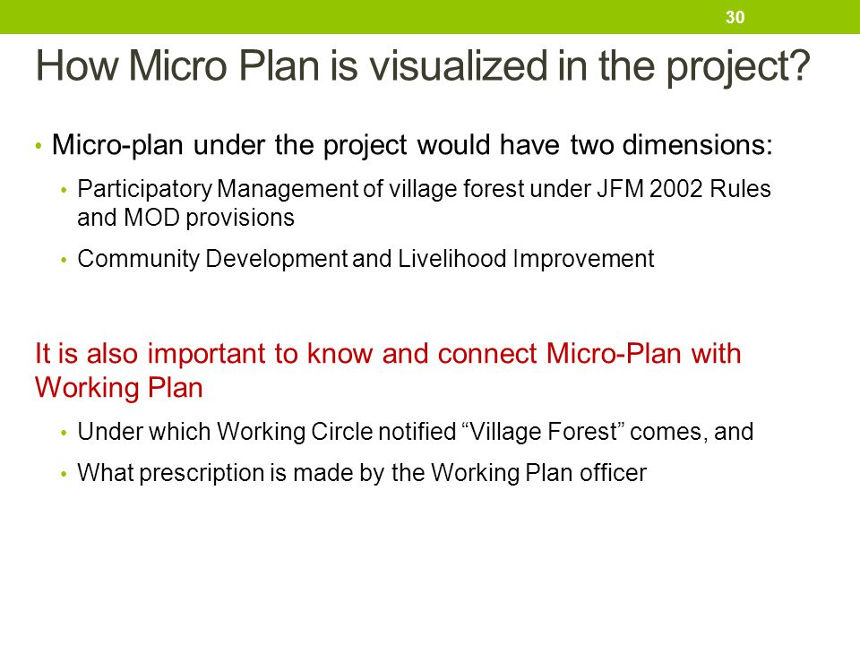 How Micro Plan is visualized in the project