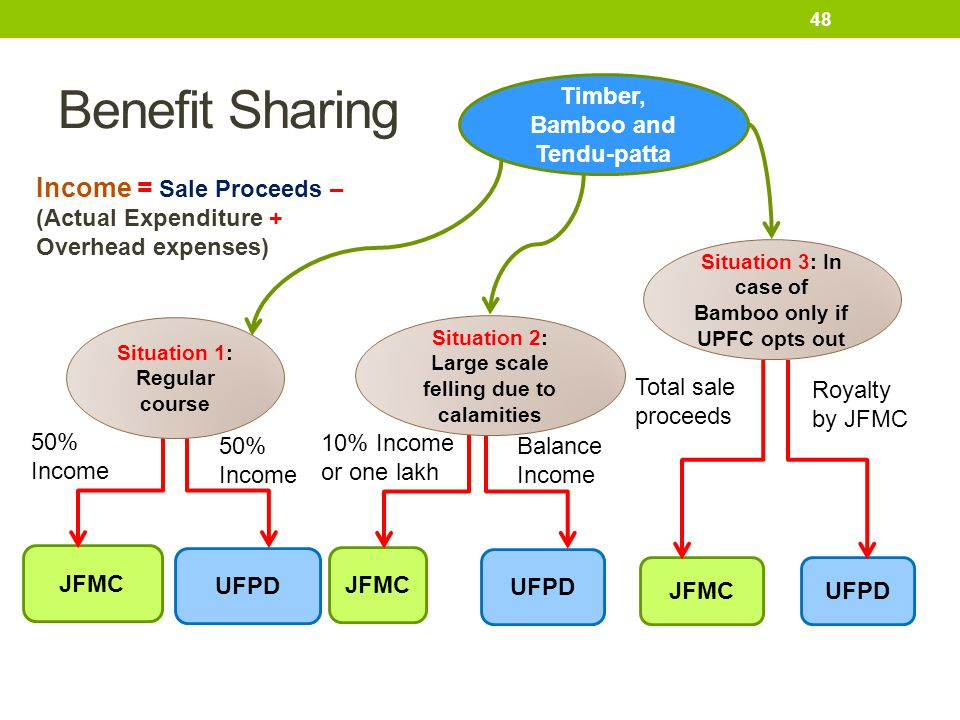 Benefit Sharing Timber, Bamboo and Tendu-patta. Income = Sale Proceeds – (Actual Expenditure + Overhead expenses)