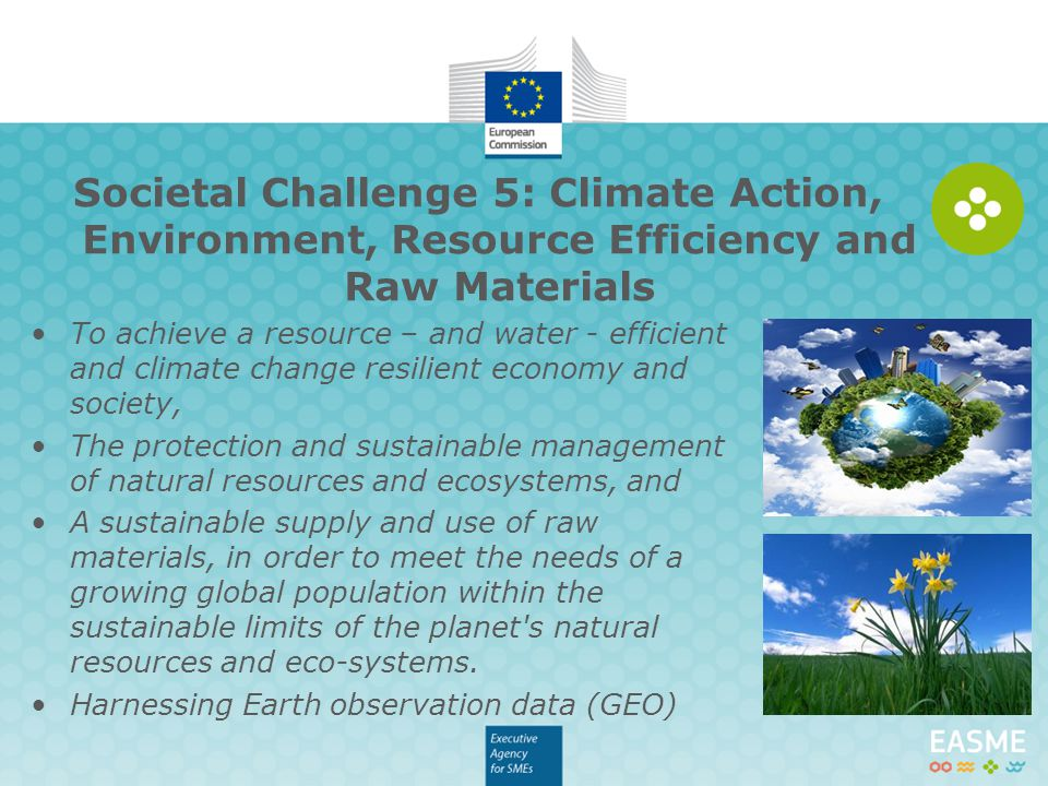 Societal Challenge 5: Climate Action, Environment, Resource Efficiency and Raw Materials