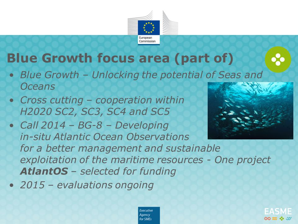 Blue Growth focus area (part of)