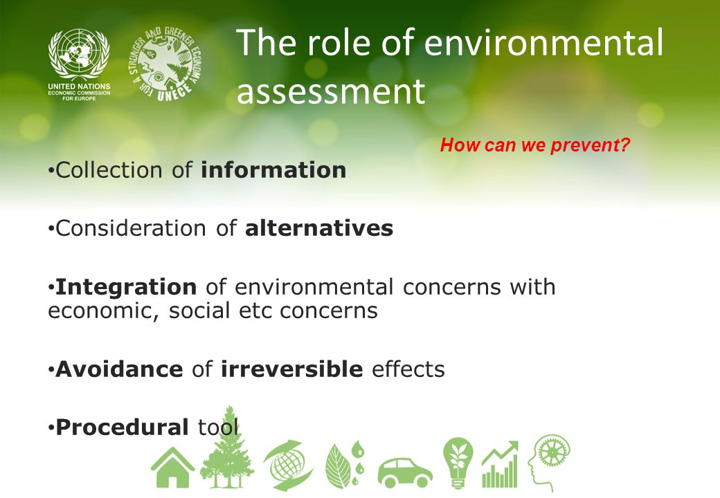 The role of environmental assessment