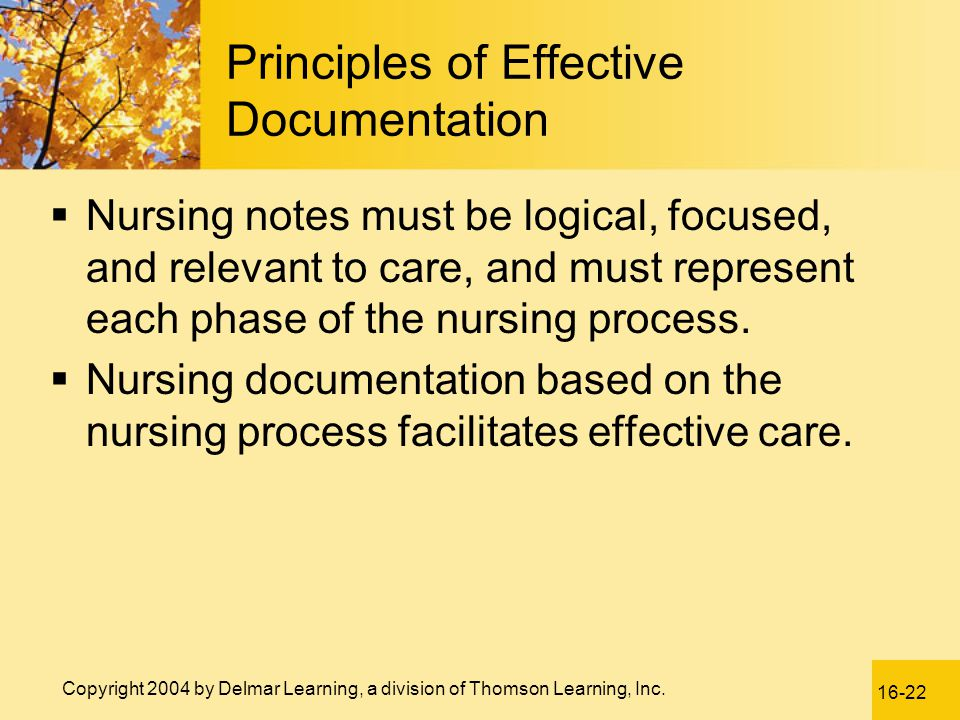 Principles of Effective Documentation