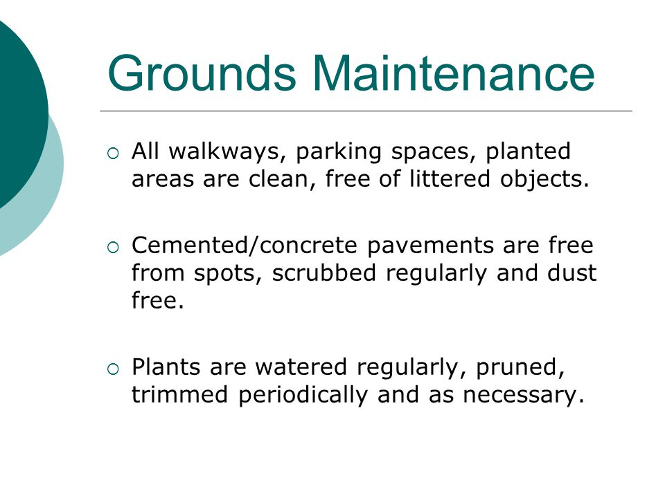 Grounds Maintenance All walkways, parking spaces, planted areas are clean, free of littered objects.