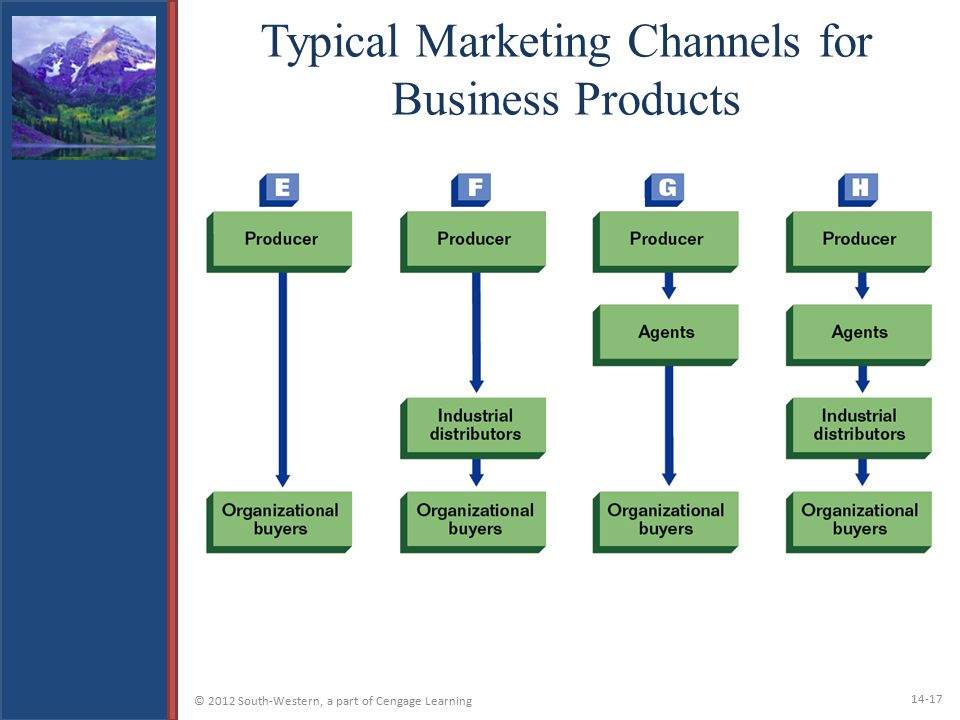 Typical Marketing Channels for Business Products