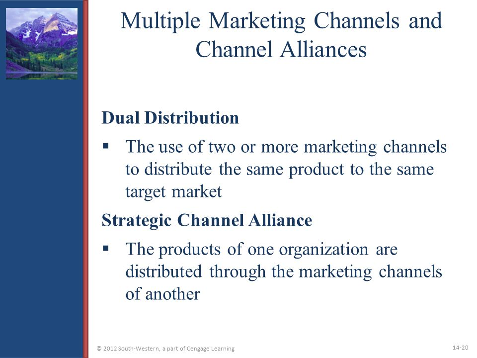 Multiple Marketing Channels and Channel Alliances
