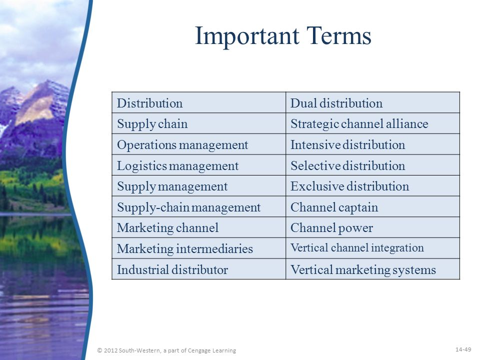 Important Terms Distribution Dual distribution Supply chain
