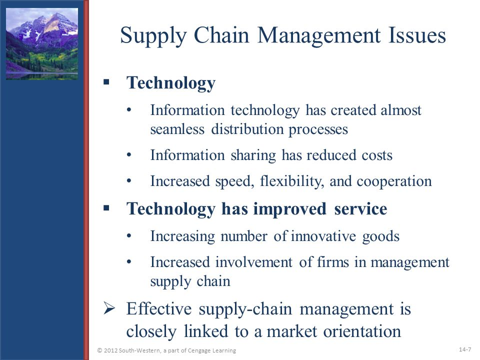 Supply Chain Management Issues
