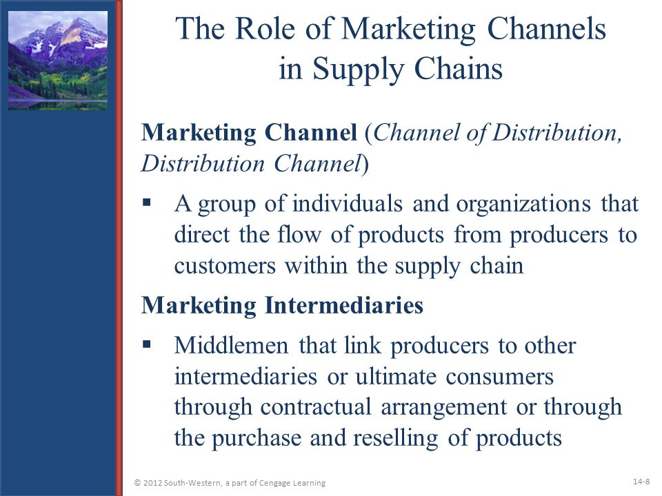 The Role of Marketing Channels in Supply Chains