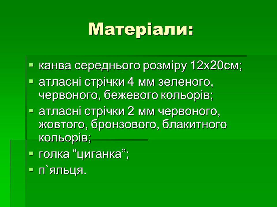 Матеріали: канва середнього розміру 12х20см;