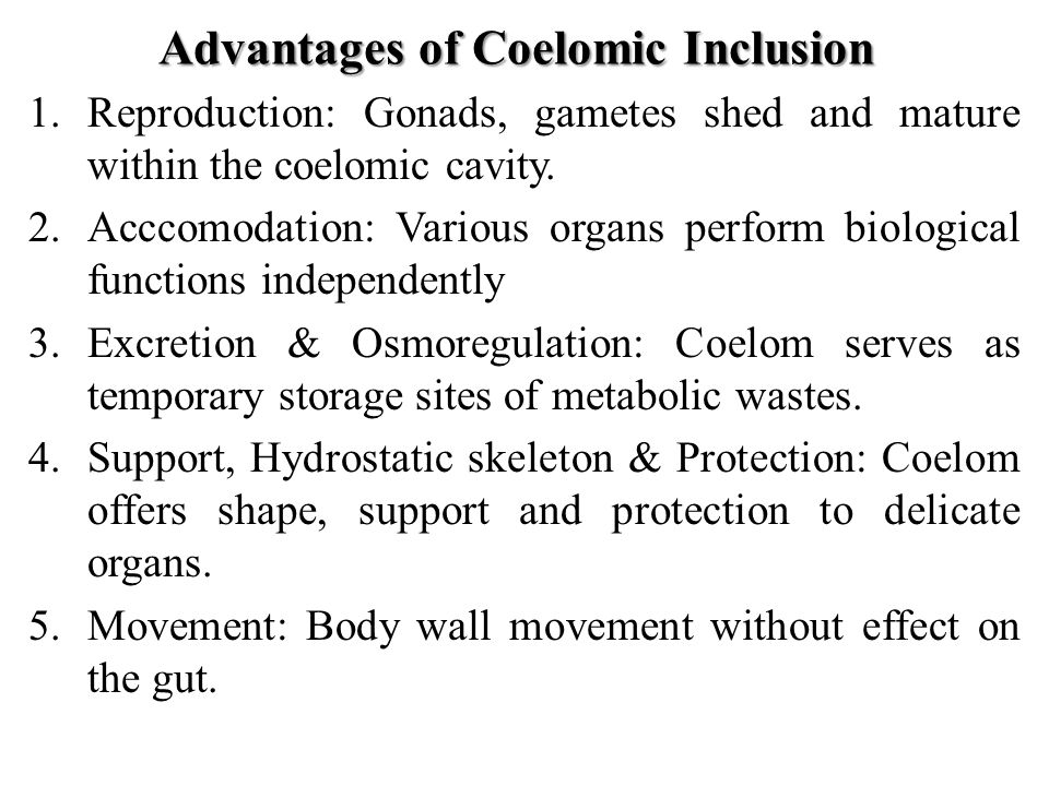 coelomic fuid of earthworm effects The invertebrate pattern-recognition protein named coelomic  defense mechanism in the earthworm coelomic fuid  effects of all-trans retinoic acid.