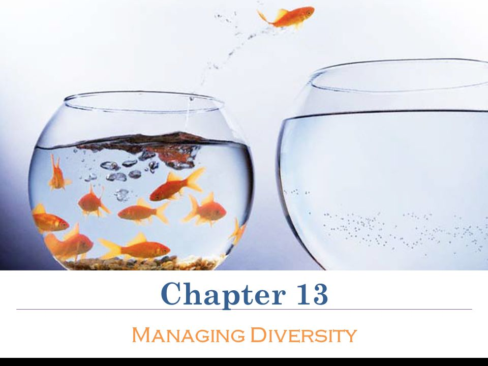 Chapter 13 Managing Diversity