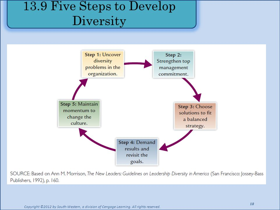 13.9 Five Steps to Develop Diversity