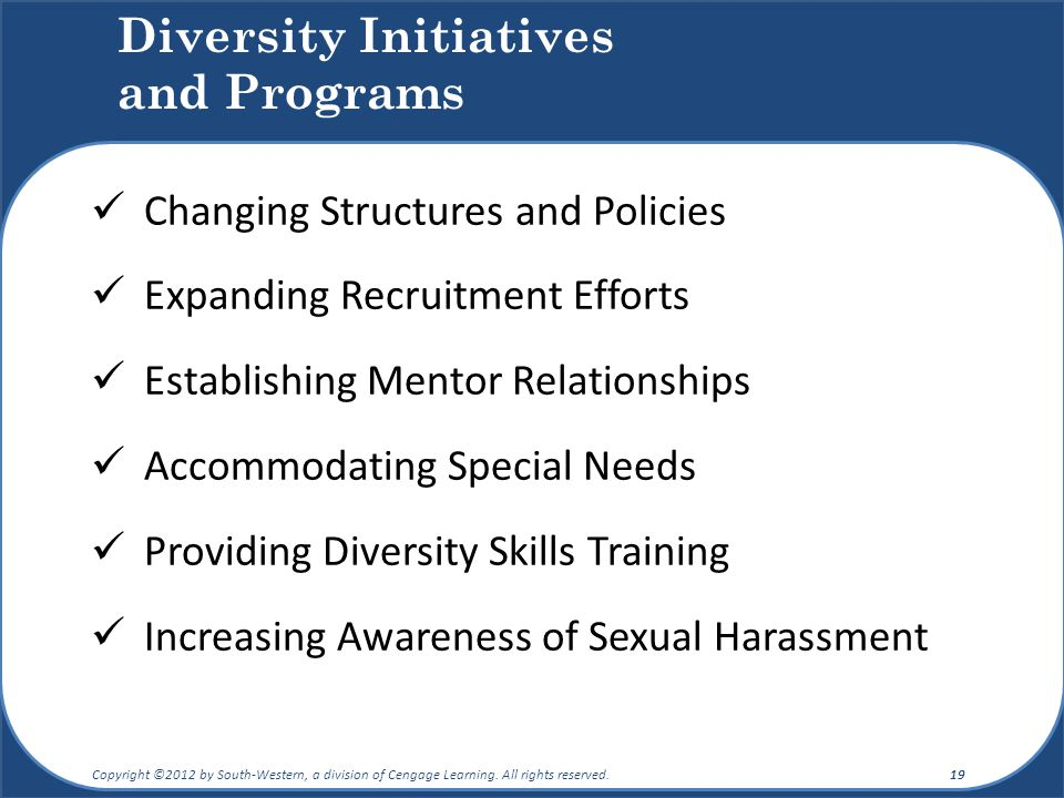 Diversity Initiatives and Programs