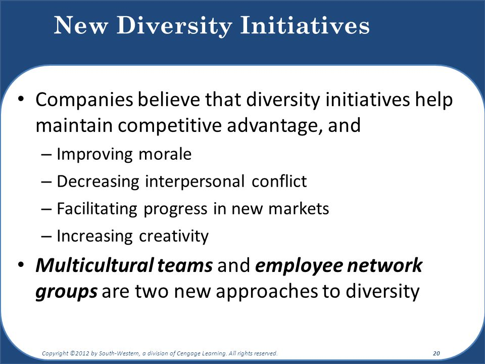 New Diversity Initiatives