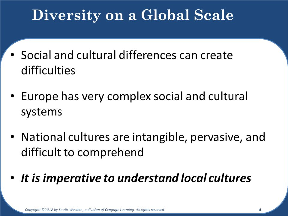 Diversity on a Global Scale