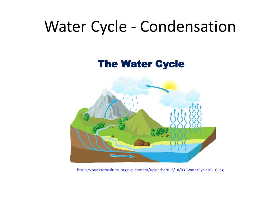 Water Cycle - Condensation