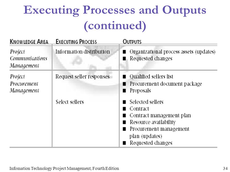 Executing Processes and Outputs (continued)