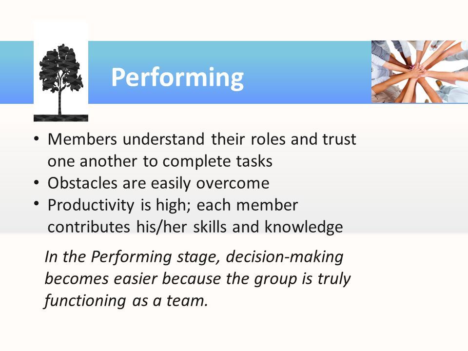 Performing Members understand their roles and trust one another to complete tasks. Obstacles are easily overcome.