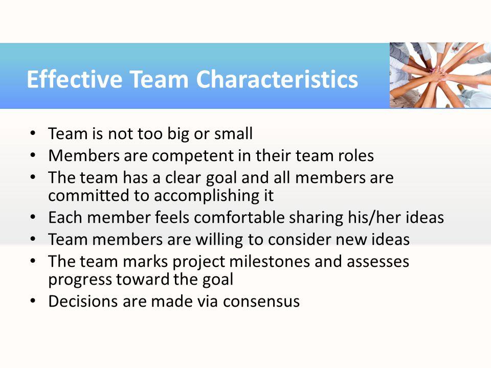 Effective Team Characteristics