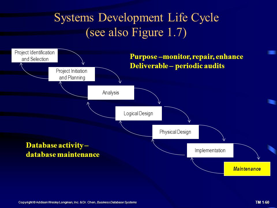 Chapter 1 The Database Environment And Development Process Ppt Download