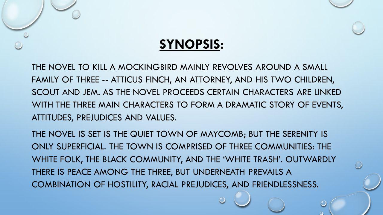 mockingbird racism and white community essay