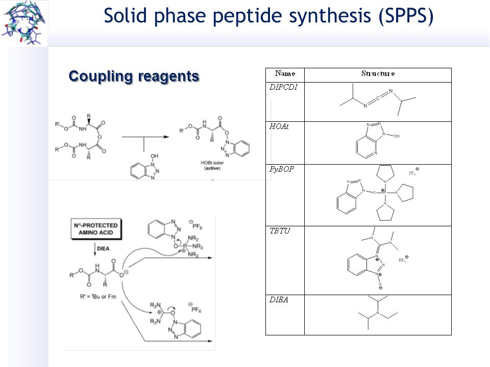 solid phase peptide synthesis spps A series of improvements to the standard solid phase peptide synthesis (spps) process allowing for significant gains in product purity along with only a 4 min.