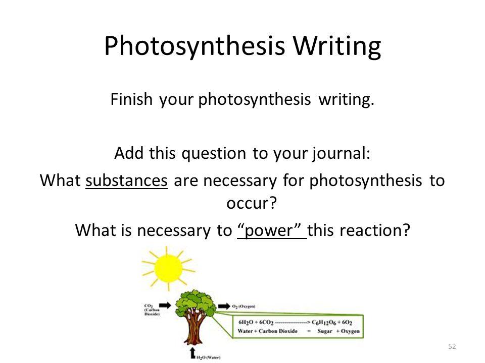 Write Essay Photosynthesis