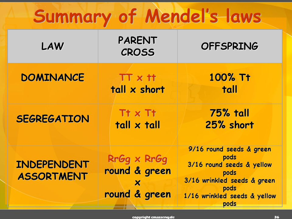 Summary of Mendel's laws