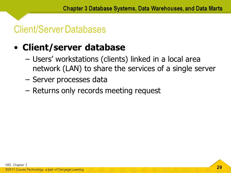 Client/Server Databases