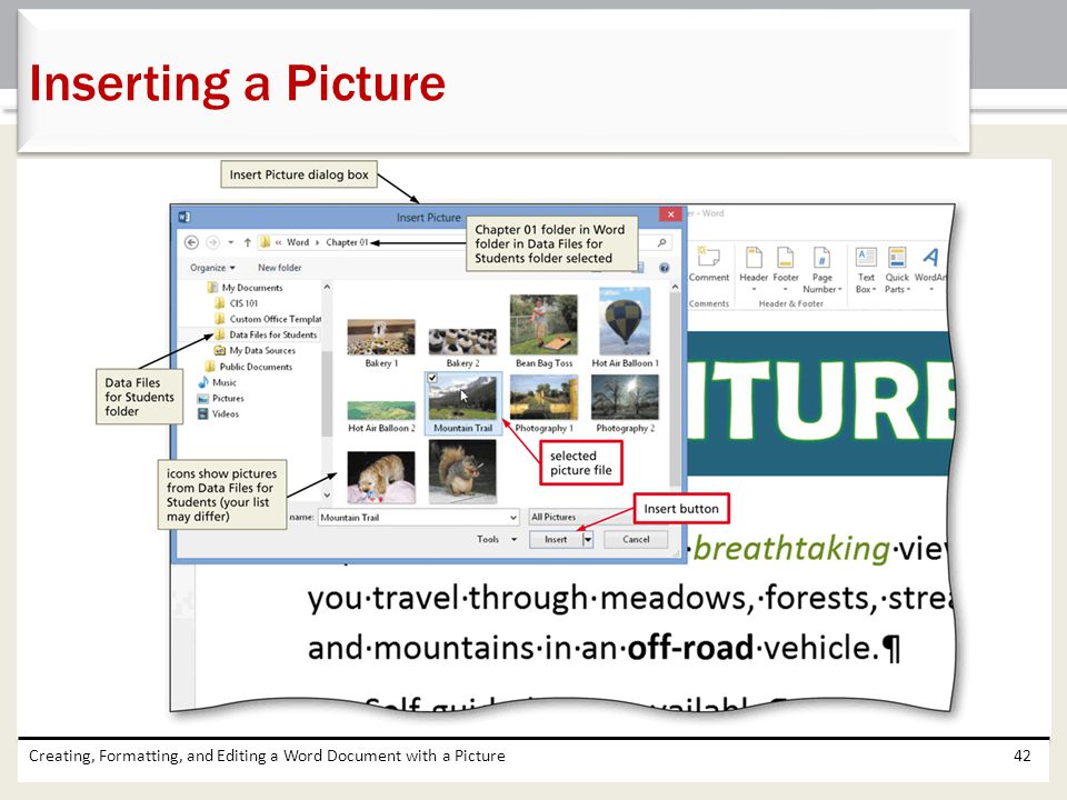 Inserting a Picture Creating, Formatting, and Editing a Word Document with a Picture