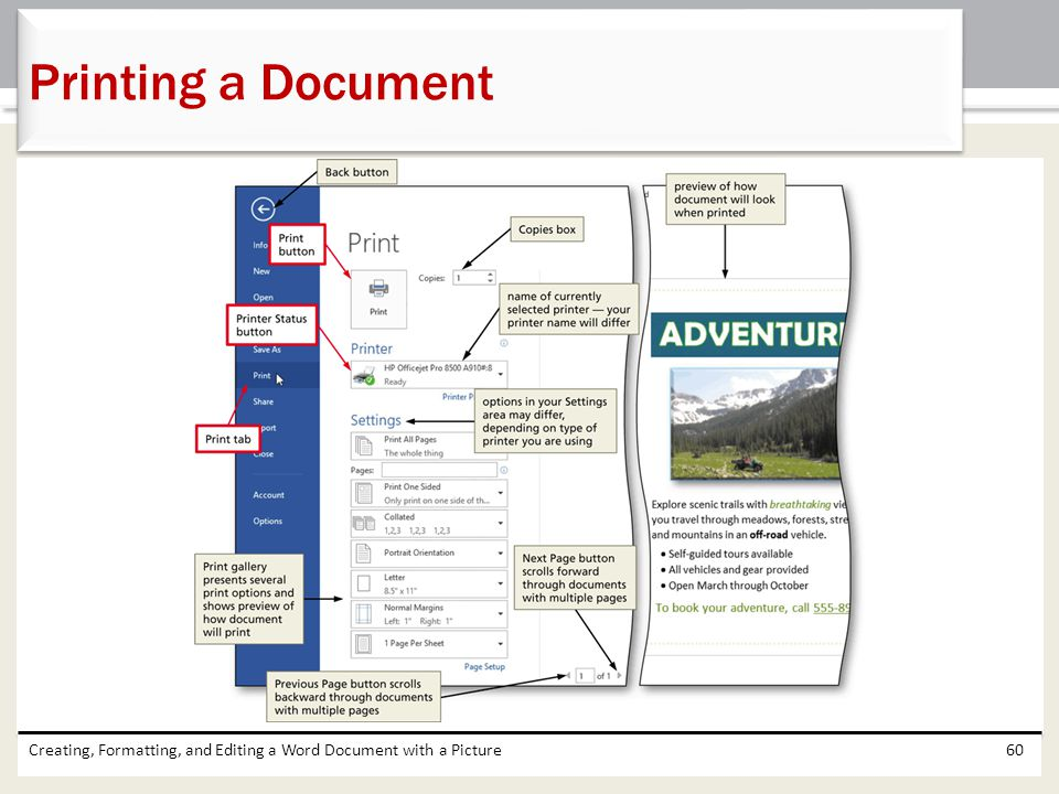 Printing a Document Creating, Formatting, and Editing a Word Document with a Picture