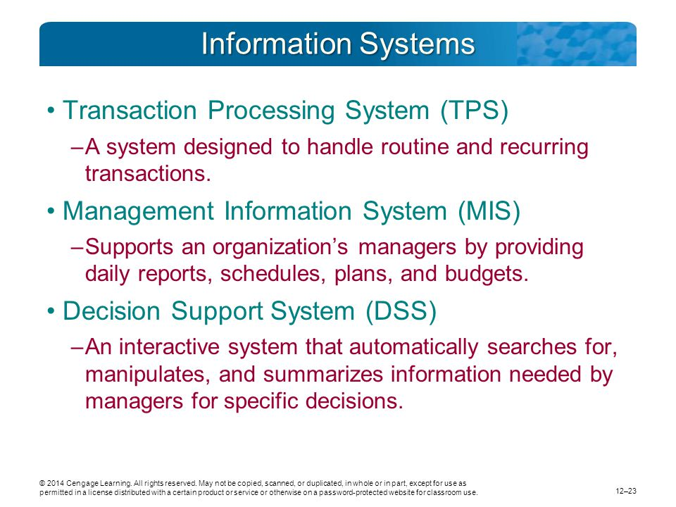 Information Systems Transaction Processing System (TPS)