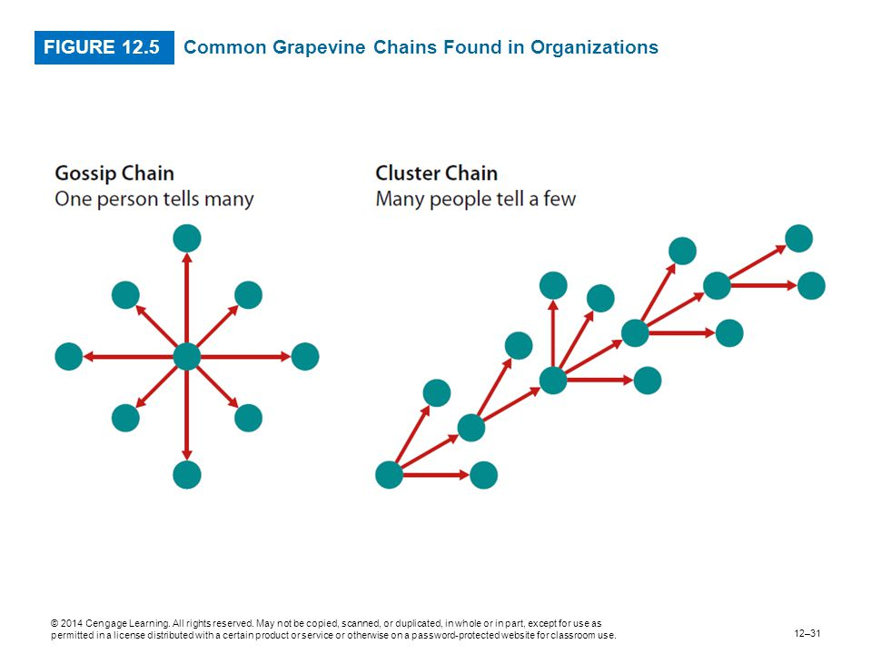 Common Grapevine Chains Found in Organizations