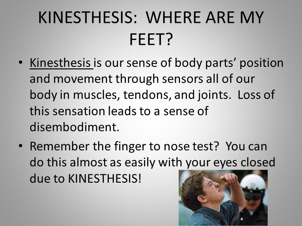 what is kinesthesis Worms in your throat by kinesthesis, released 25 april 2017 1 worms in your throat 2 refleshing 3 eight shades of hate 4.