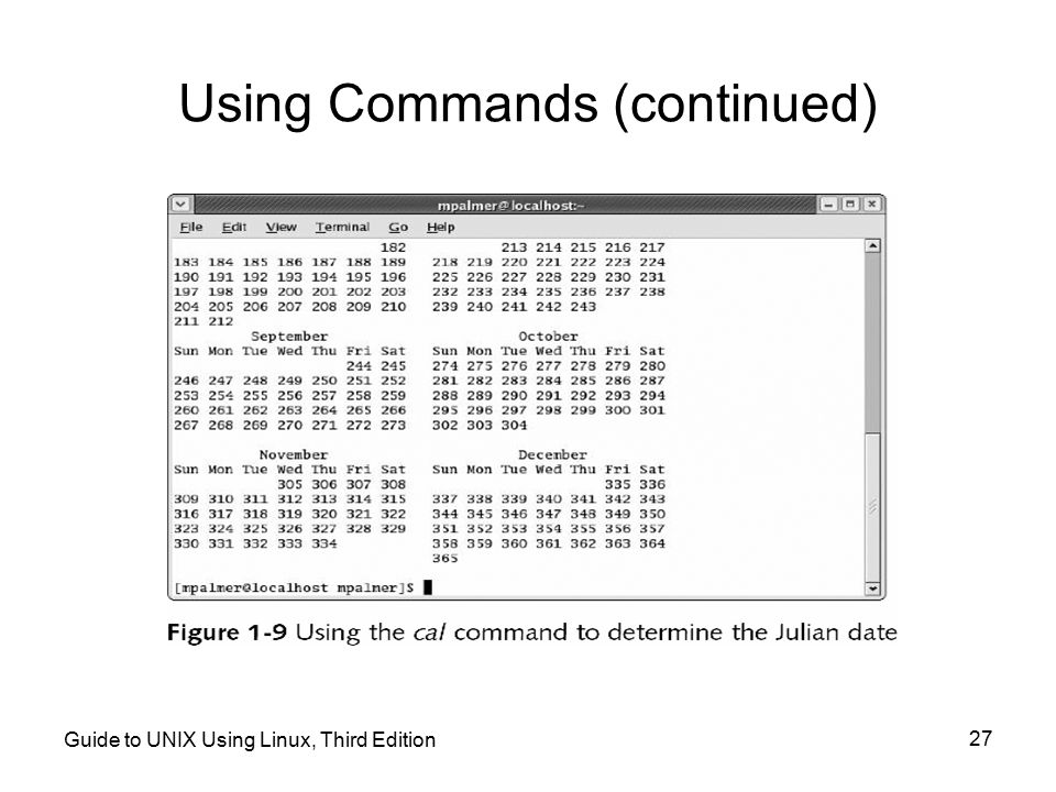 Using Commands (continued)