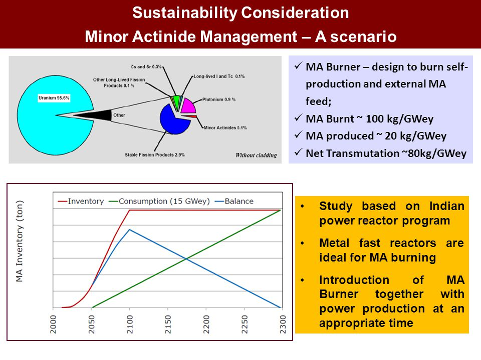 Sustainability Consideration Minor Actinide Management – A scenario