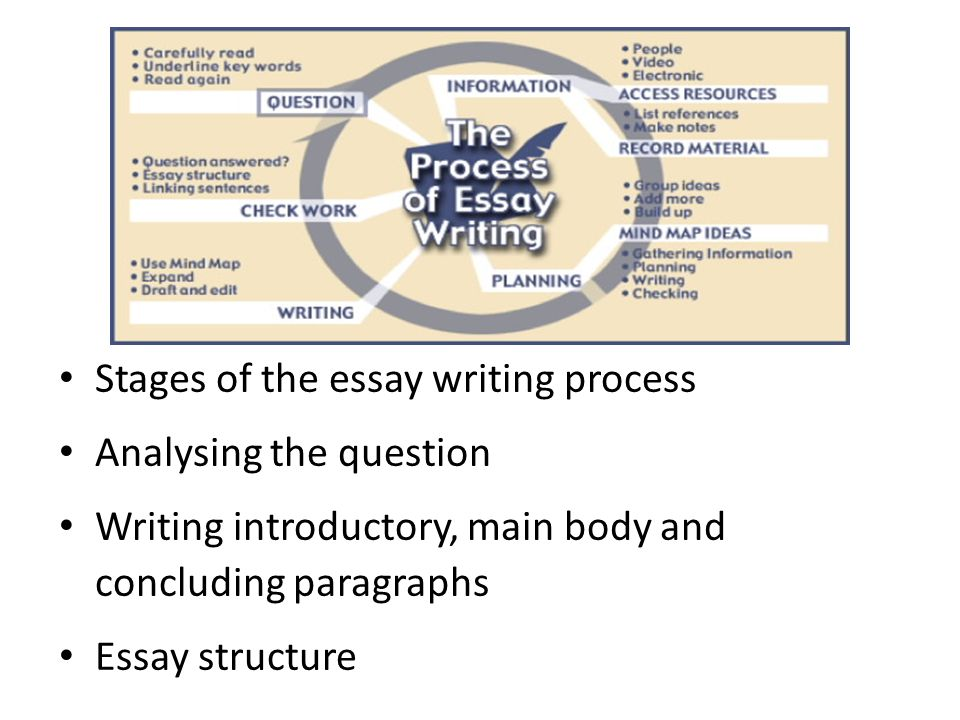 processes and stages of memory essay Stages of writing stages of writing it stage of outline writing only strict following of these steps can guarantee that your essay writing process will.
