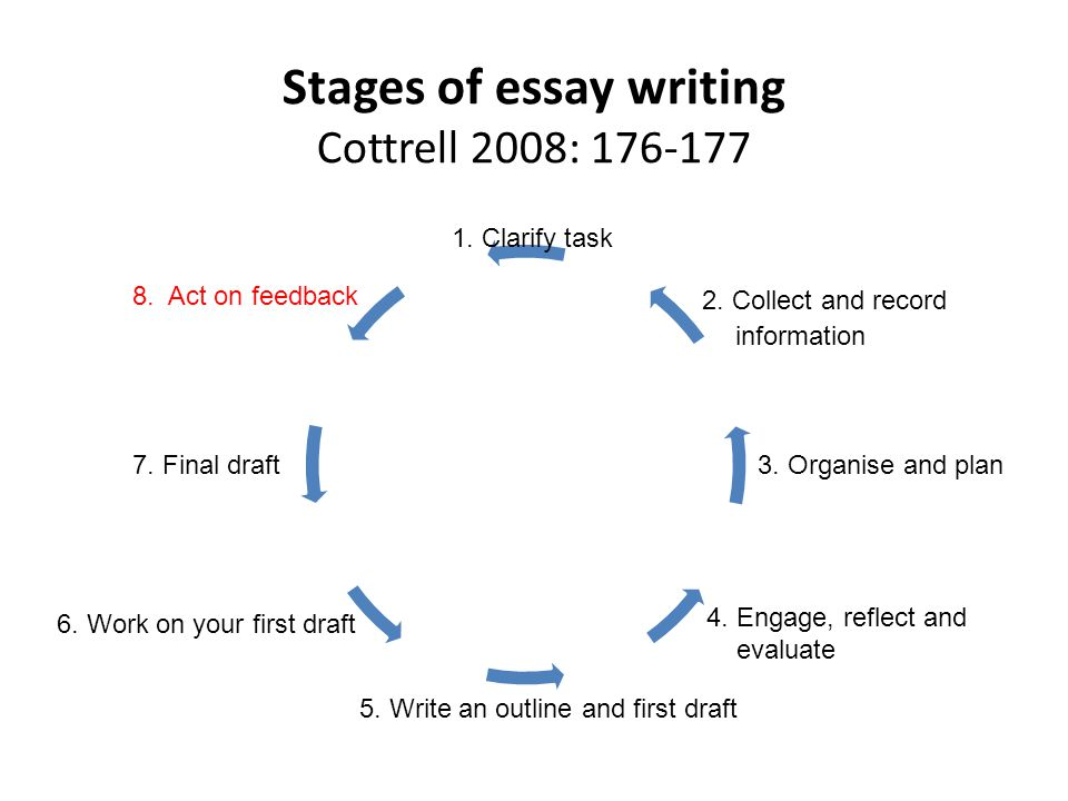 stage essay Life stages
