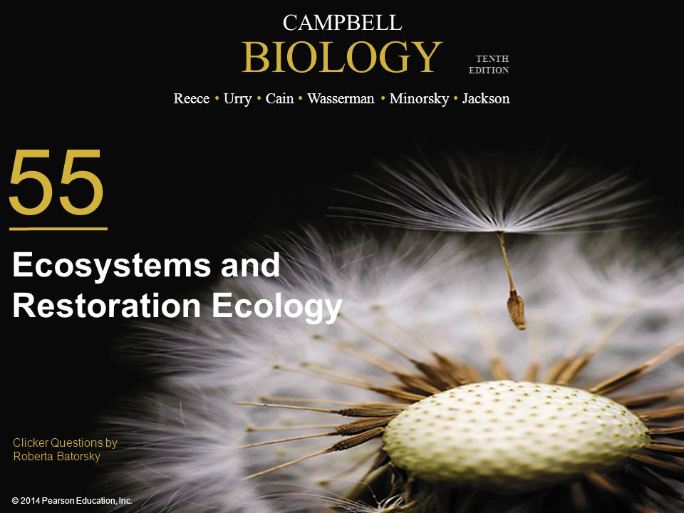 Ecosystems and Restoration Ecology
