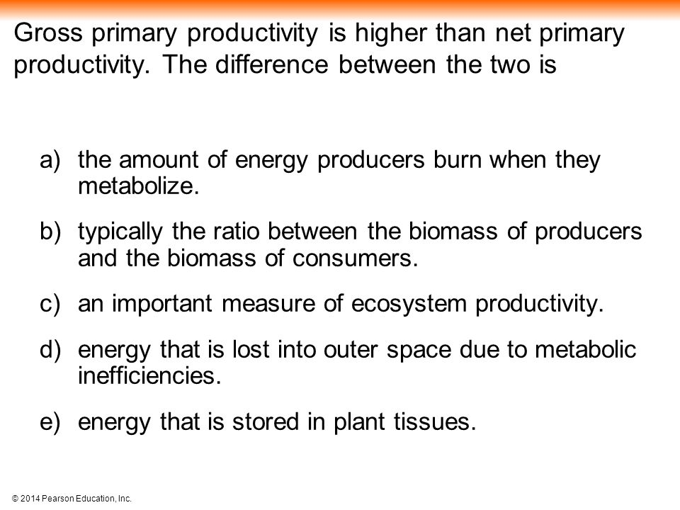 Gross primary productivity is higher than net primary productivity