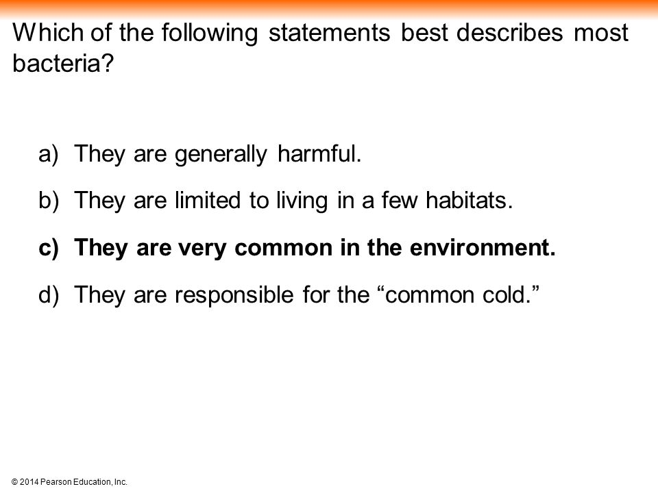 Which of the following statements best describes most bacteria