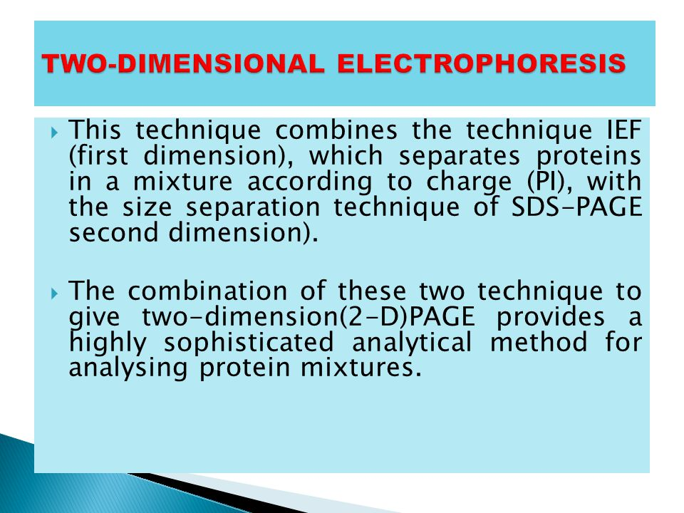 TWO-DIMENSIONAL ELECTROPHORESIS
